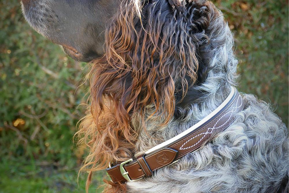 Hundehalsband braun-weiss mit Ziernaht